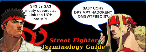 sf_terminology_guide